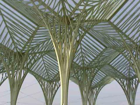 Calatrava, Dieu ne joue pas aux dés